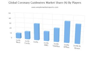 in-depth analysis of key market players functioning in the global Coronary Guidewires industry.